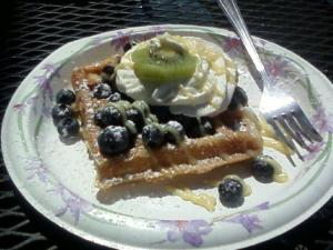 I loved my waffle with fresh blueberries and lemon panna cotta!